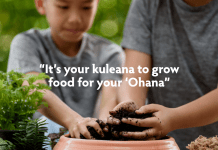 Maui Ohana Gardens Food security