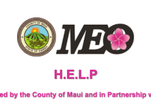 HELP MEO Maui financial assistance