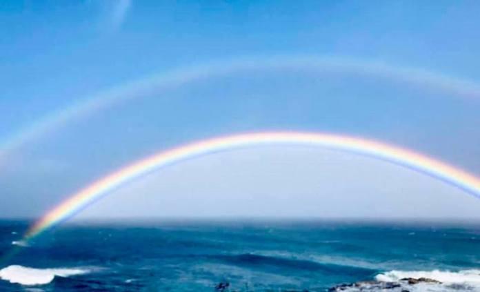 rainbow baby maui loss