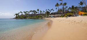 Napili Bay is one of Maui's best snorkeling beaches
