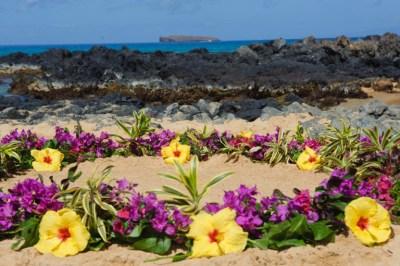 Maui Wedding Flowers