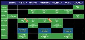 schedule week-jiu-jitsu muay-thai 2019