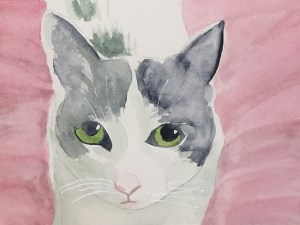 Jackson the cat watercolor painting by Maura Satchell