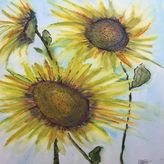 August Sunflowers LR