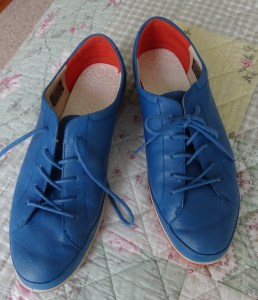 Beautiful blue shoes