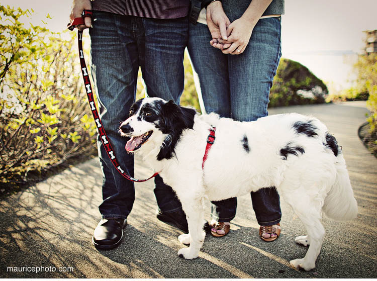 Engagement Portraits with a dog on the Kirkland Waterfront