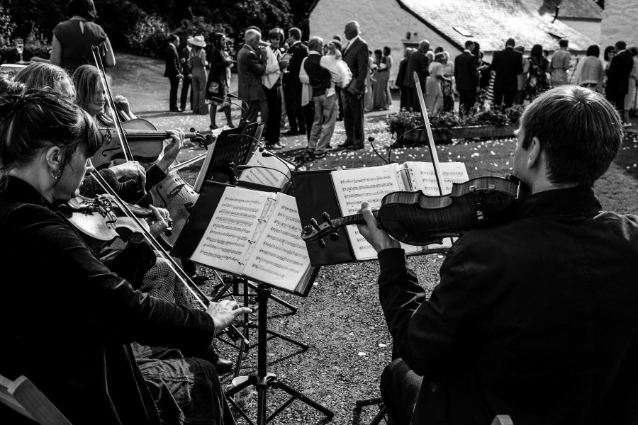 Hafod Farm Wedding - The string quartet.