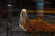 El sueño de Elpis 11 Camas El sueño de Elpis:Camas de fierro:2012