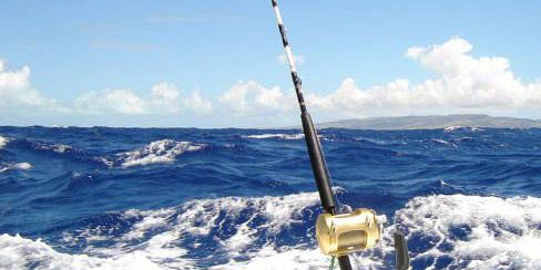 Big Game Fishing Trip In Rodrigues 53 Ft Boat Full Day