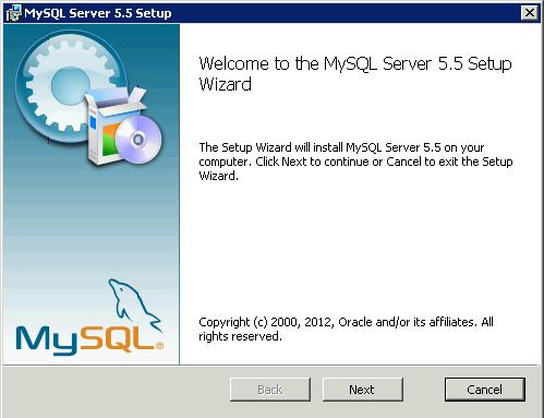 mysql 5.5.29 setup Windows 2008 server