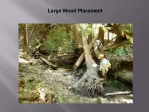 August2014_Agenda_Item_8_Attach_4_Powerpoint_BoardOfForestry_Page_14