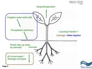 Gowdy Plant