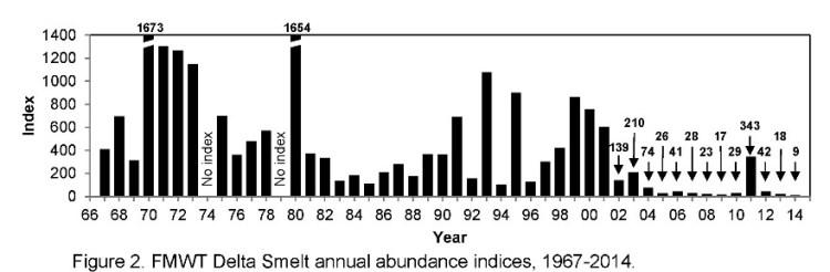 FMWT Delta smelt index graphic