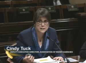Cindy Tuck 1