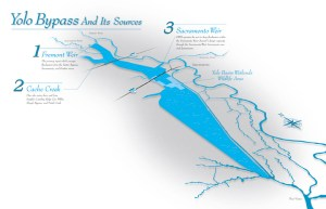 yolo bypass map