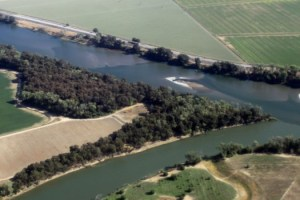 Sandbars in the Sacramento River, August of 2014