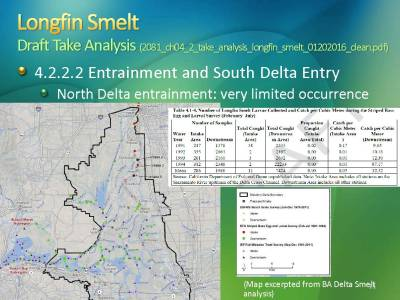 Longfin smelt_Page_11