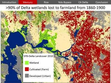 USGS Mercury Rice Delta_Page_14