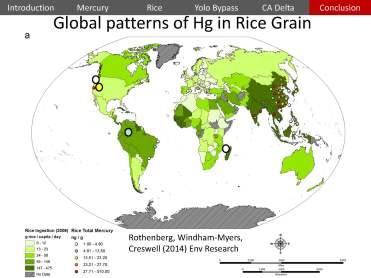 USGS Mercury Rice Delta_Page_46