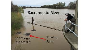 Crowfoot Floodplains PDF_Page_14