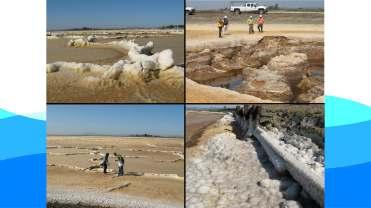 Crowfoot Floodplains PDF_Page_58