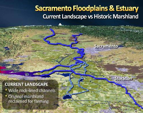MWD Yolo Bypass PPT_Page_06