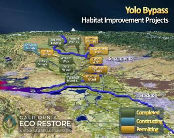MWD Yolo Bypass PPT_Page_12