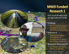 MWD Yolo Bypass PPT_Page_26