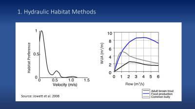 Hydraulic habitat methods for determining environmental flows