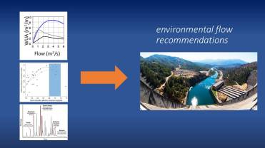 Environmental flow recommendations