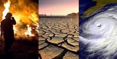 Effects | Facts – Climate Change: Vital Signs of the Planet