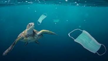 Growing plastic pollution in wake of COVID-19: how trade policy can help    UNCTAD