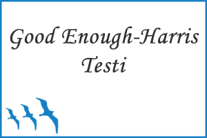 Good Enough - Harris (Bir İnsan Çiz) Testi