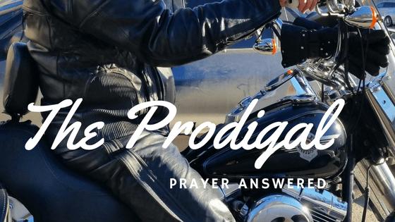 The Prodigal Returns