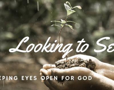 Looking, Seeing, Keeping Eyes Open