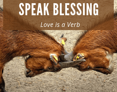 Speak Blessing, not Cursing! Love is a Verb!