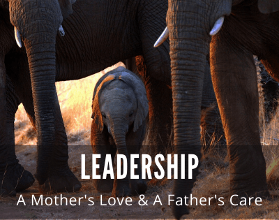 Leadership: A Mother's Love and a Father's Care