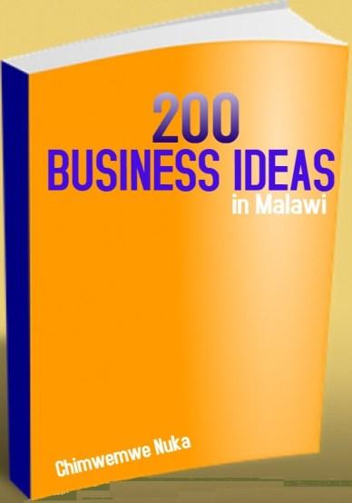 business ideas in Malawi
