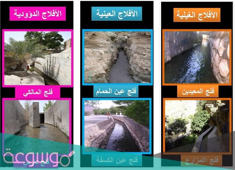كم عدد الأفلاج في سلطنة عمان