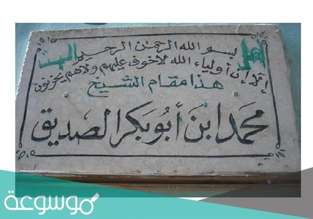 من هو محمد بن ابي بكر