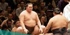 ما هي الرياضة الوطنية في اليابان