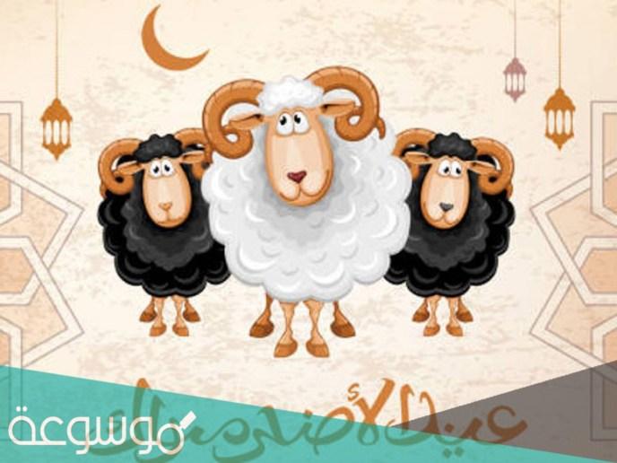 عبارات عيد الاضحى 2021 -1442 للتهنئة والمباركة بالعيد