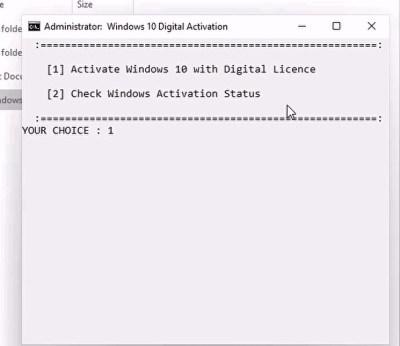 Windows 11 activator Screenshot