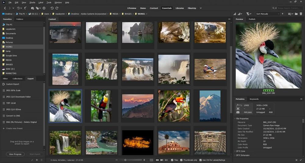 Adobe Bridge 2021 Screenshot