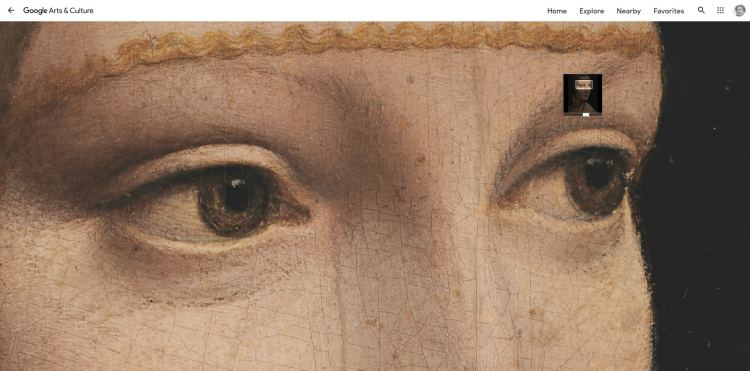 NO DOWNLOAD OPTION. The zoomable image of The Lady with an Ermine on the Google Arts and Culture website. You can zoom into such high details on the site but there are no options on the page to directly download the image.