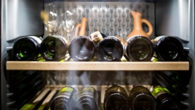 Top 5 Best Kalamera Wine refrigerator Black Friday Deals 2020