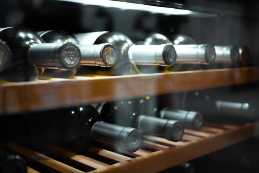 Top 5 Best Aobosi Dual Zone Wine Cooler Black Friday Deals 2020