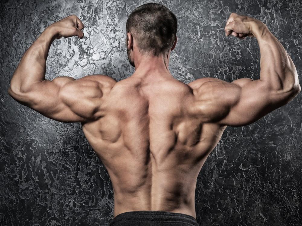 限界まで鍛え上げられた筋肉