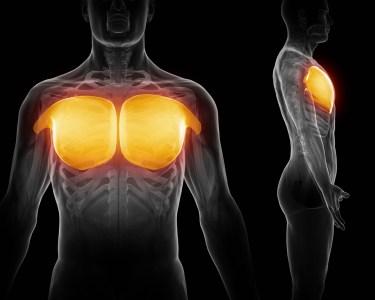 大胸筋 CT画像