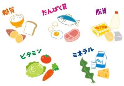 五大栄養素を含む食材のイラスト